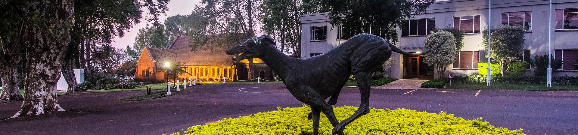 kearsney-college-old-boys-banner-greyhound-statue